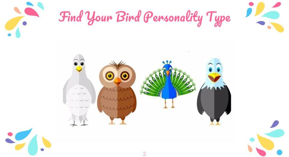 Learn More About Your Bird Personality - Small Business